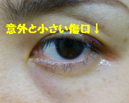 DSC_1087_1.jpg